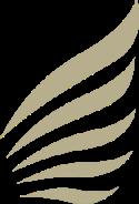 vlm airlines seatlink